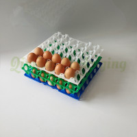 plastic EGG TRAY (1)