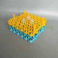 plastic EGG TRAY (3)